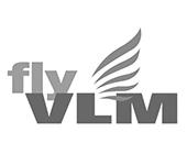 Fly VLM