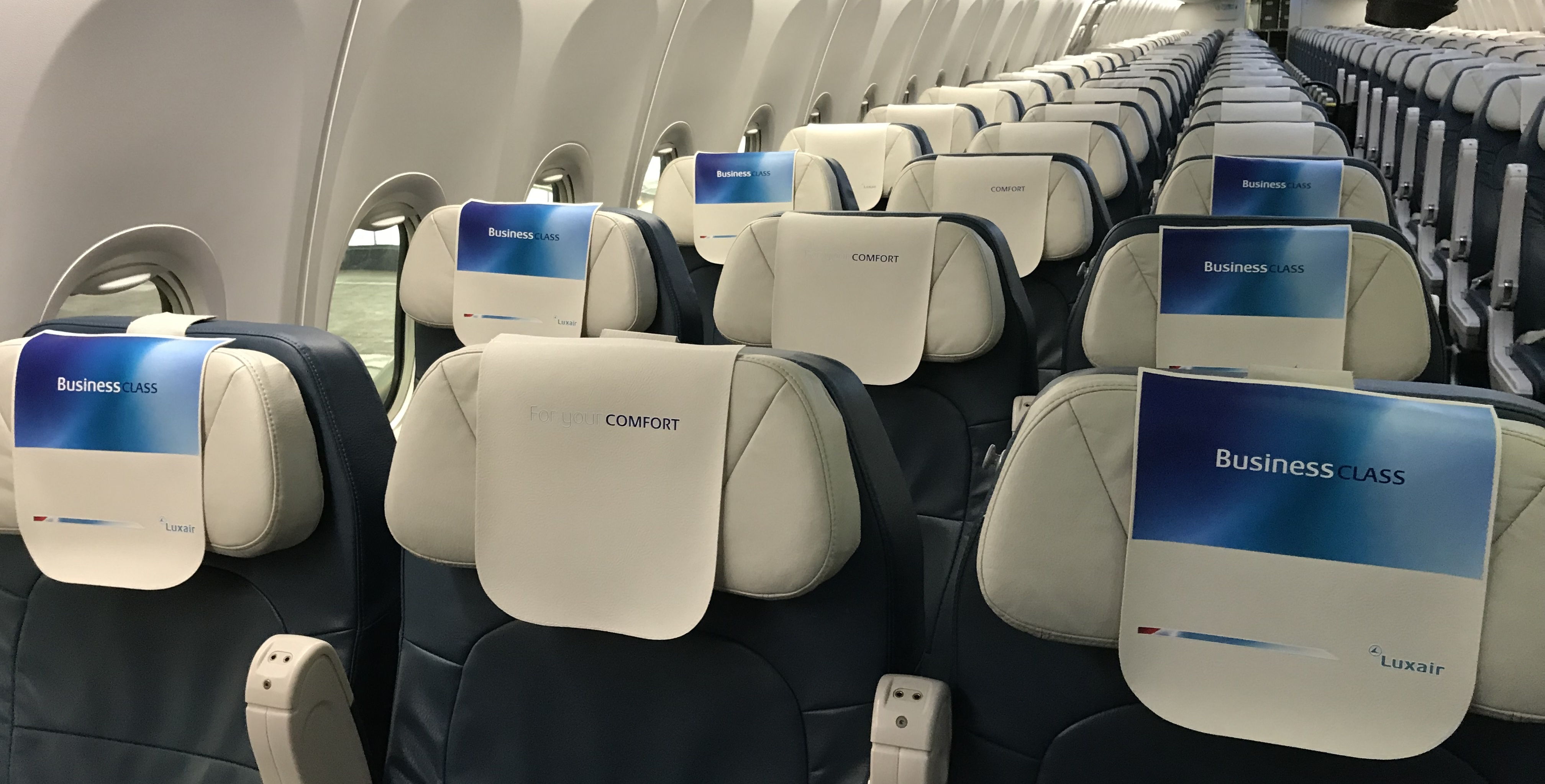 Illustration for: New Luxair's leatherette headrest covers (antimacassars)
