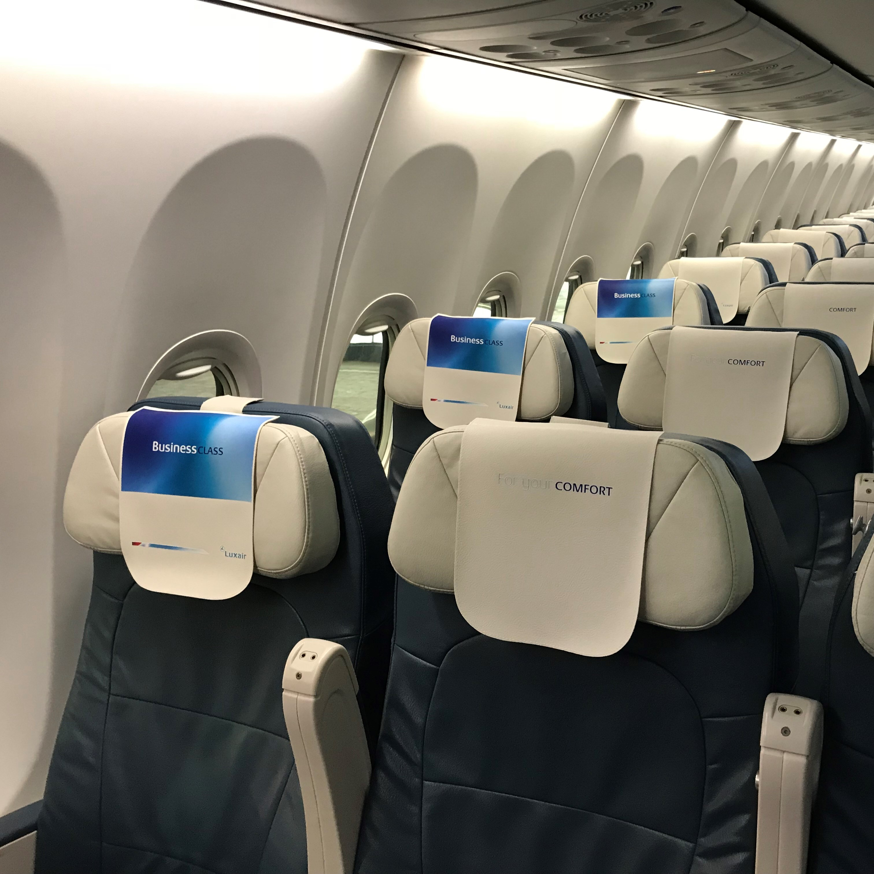 Illustration of: New Luxair's leatherette headrest covers (antimacassars)