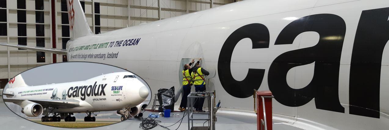 Illustration for: Beluga decals for Cargolux, SEA LIFE Trust and WDC
