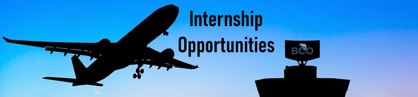 Illustration for: INTERNSHIP OFFERS: BCO Aviation seeks for Sales and Marketing Interns