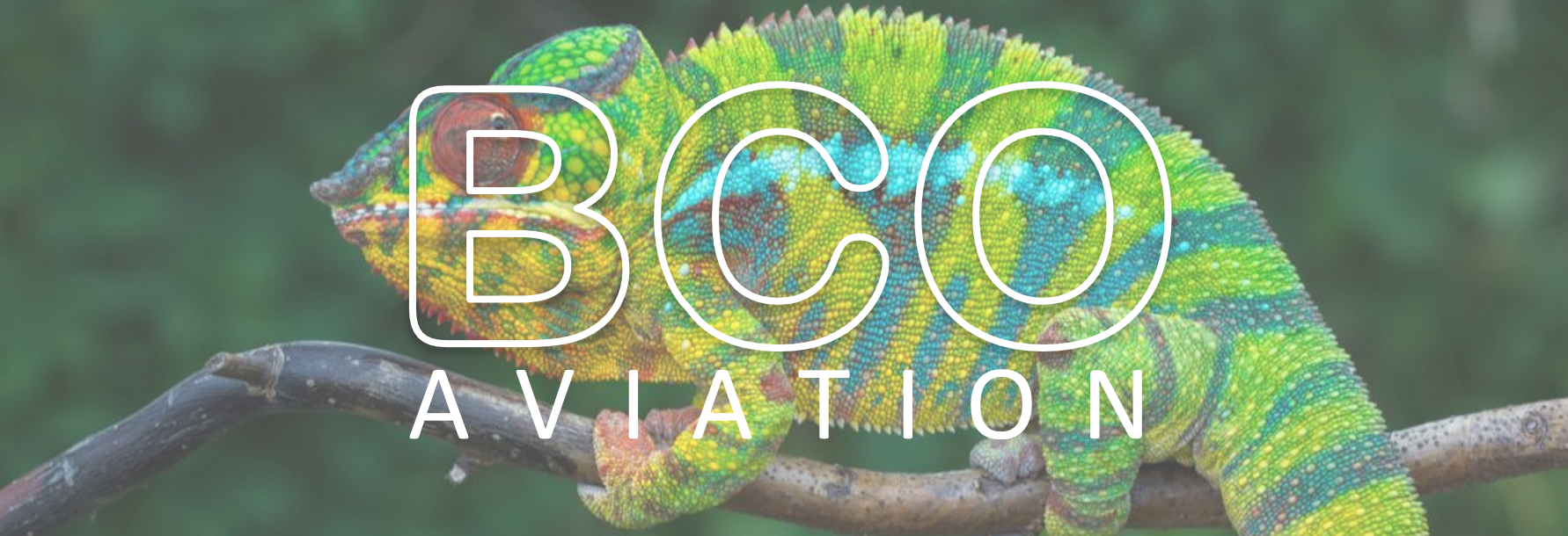 Illustration for: Why is the chameleon representing BCO Aviation?